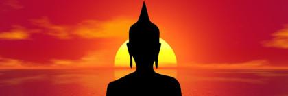 wlasne zen