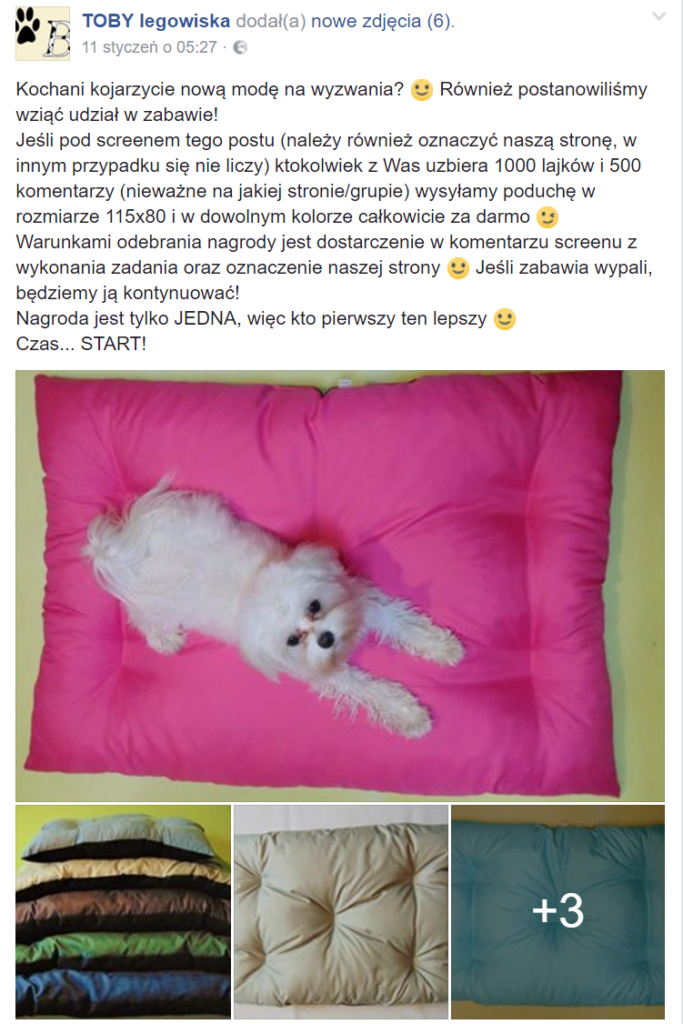 toby legowska