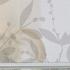 Folia na okno dachowe – czy warto?